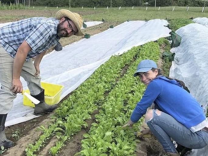 Lớp học nông nghiệp hữu cơ ngày càng hot ở Mỹ - Ảnh 1.