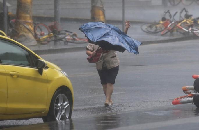[Clip] - Bão Mangkhut xô nghiêng nhà cửa, người già ở Hồng Kông quyết không sơ tán - Ảnh 9.