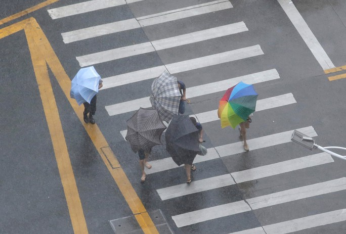 [Clip] - Bão Mangkhut xô nghiêng nhà cửa, người già ở Hồng Kông quyết không sơ tán - Ảnh 12.