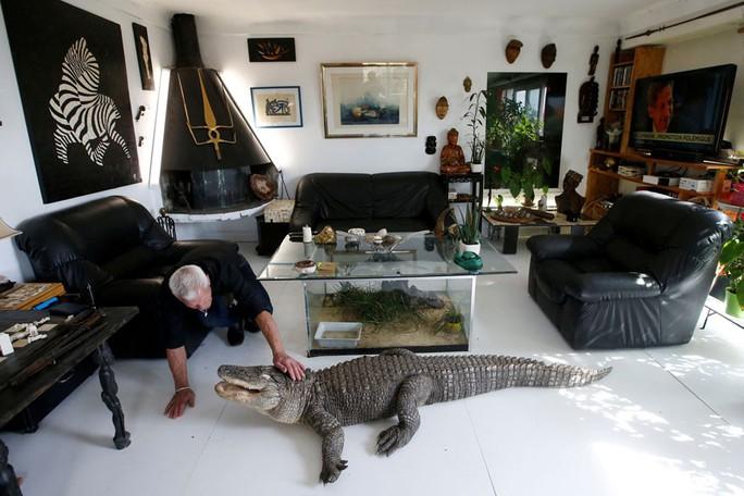 Cụ ông nuôi hơn 400 động vật bò sát trong nhà - Ảnh 2.