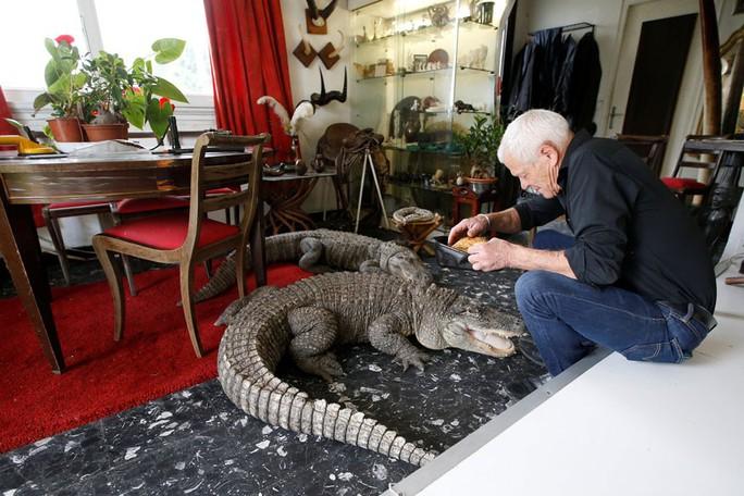 Cụ ông nuôi hơn 400 động vật bò sát trong nhà - Ảnh 3.