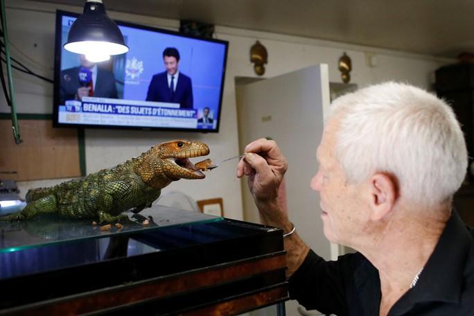 Cụ ông nuôi hơn 400 động vật bò sát trong nhà - Ảnh 5.