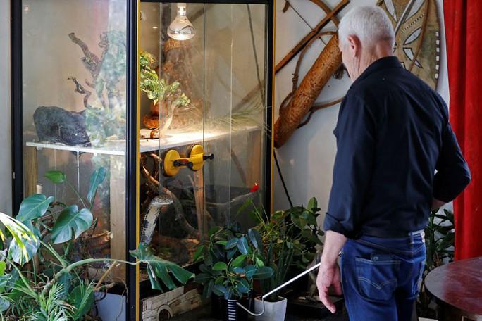 Cụ ông nuôi hơn 400 động vật bò sát trong nhà - Ảnh 6.