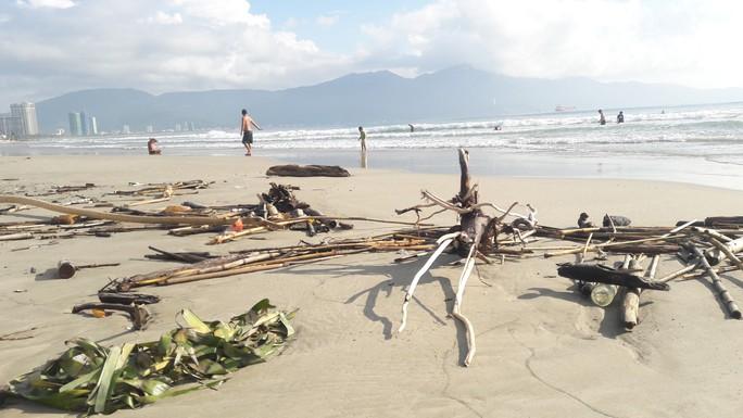 Hơn 7 tấn rác thải bủa vây 8km bờ biển Đà Nẵng - Ảnh 5.