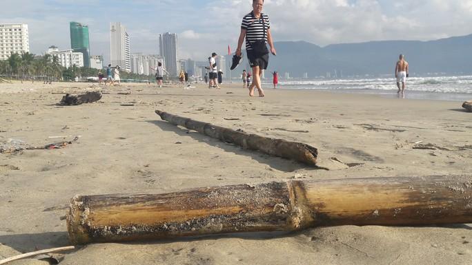 Hơn 7 tấn rác thải bủa vây 8km bờ biển Đà Nẵng - Ảnh 4.