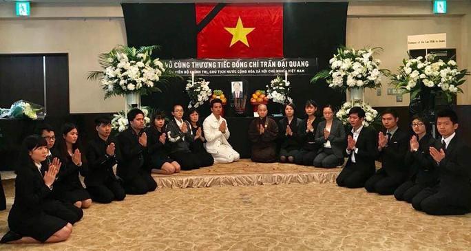 Lãnh đạo nước ngoài đến Đại sứ quán viếng Chủ tịch nước Trần Đại Quang - Ảnh 13.