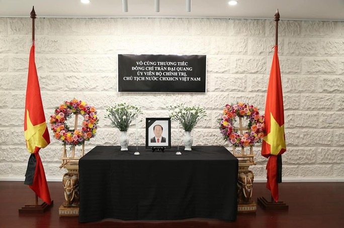 Lãnh đạo nước ngoài đến Đại sứ quán viếng Chủ tịch nước Trần Đại Quang - Ảnh 19.