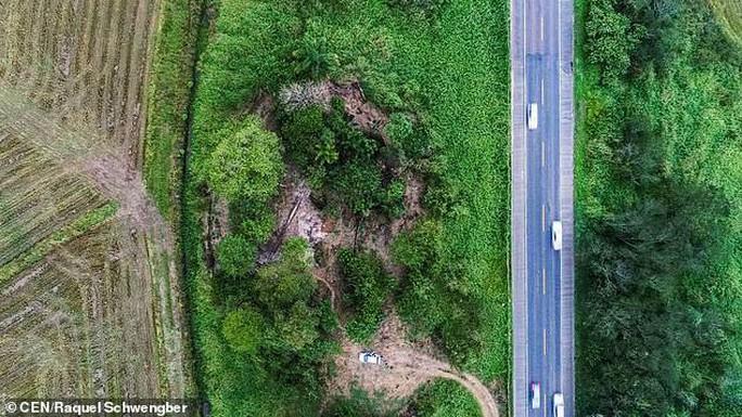 Làm đường, đào trúng… hai bộ hài cốt bộ lạc Amazon - Ảnh 6.