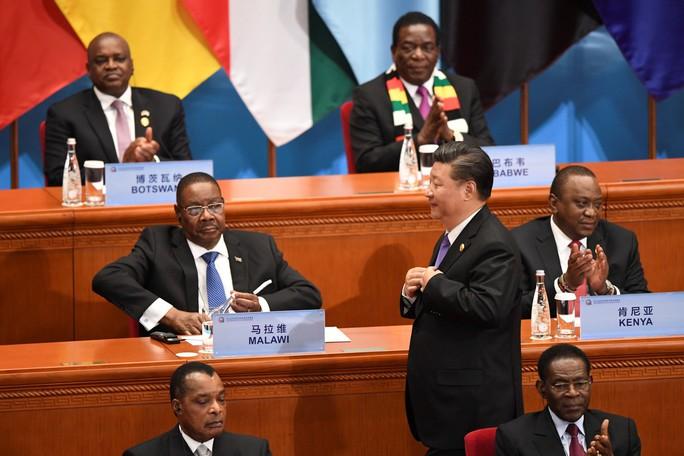 Ông Tập trấn an châu Phi về món quà khó cưỡng của Trung Quốc - Ảnh 3.