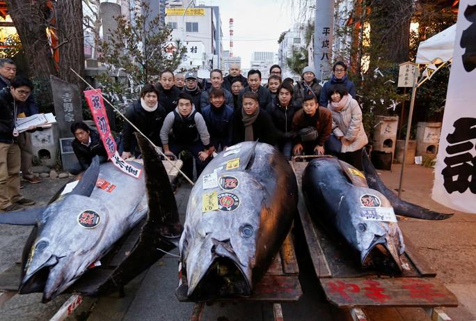 Cá ngừ vây xanh giá gần 324.000 USD - Ảnh 1.