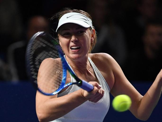 Tiếp đà hưng phấn, Sharapova tiến vào tứ kết Thâm Quyến mở rộng - Ảnh 2.