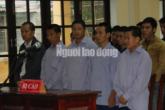 Vụ phá rừng pơ mu: Cựu phó Đồn Biên phòng cửa khẩu Nam Giang hầu tòa - Ảnh 1.