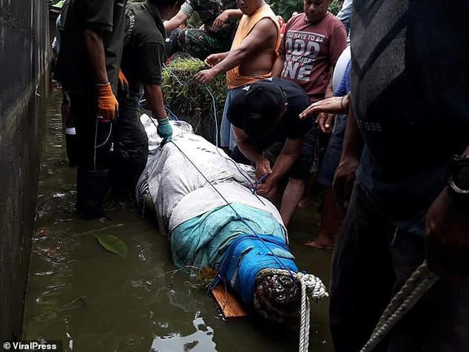Cá sấu nhảy lên tường cao 2,5 m, giết chết nhà khoa học nữ - Ảnh 4.