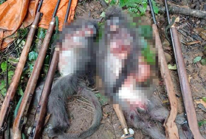 Giết hại 2 cá thể voọc quý hiếm, 5 thợ săn đối mặt mức phạt 2 tỉ đồng - Ảnh 2.