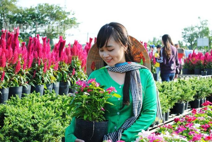 Kể từ 17-1, du khách sẽ đo chiều cao để vào làng hoa lớn nhất miền Tây - Ảnh 6.