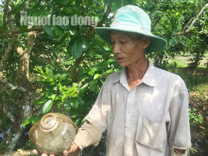 73 tuổi, cụ ông vẫn quán xuyến vườn đào tiên khủng tạo hình hồ lô  - Ảnh 9.