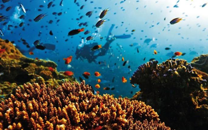 Giải mã bí ẩn lớn nhất đại dương - Ảnh 10.