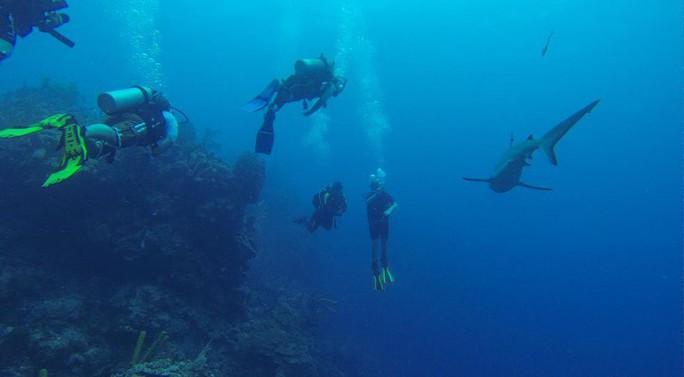 Giải mã bí ẩn lớn nhất đại dương - Ảnh 6.