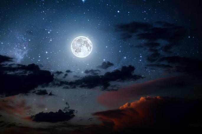 Mầm xanh đầu tiên của Trung Quốc trên mặt trăng chết yểu - Ảnh 1.