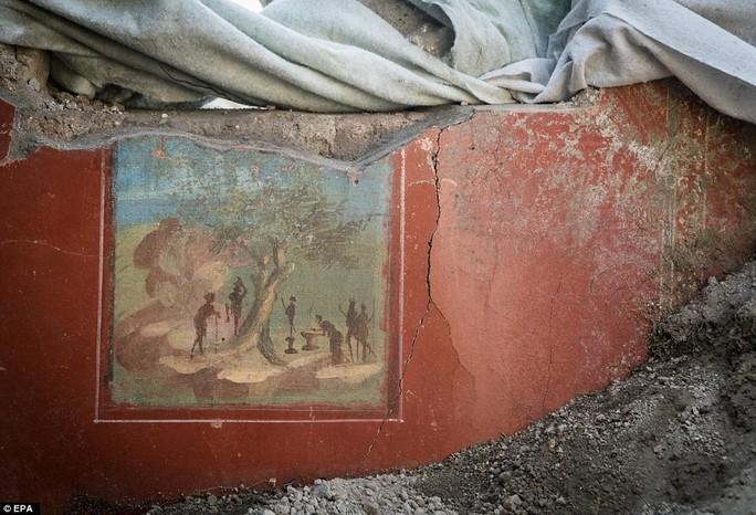 Bí ẩn 2.000 năm dưới tro núi lửa - Ảnh 4.