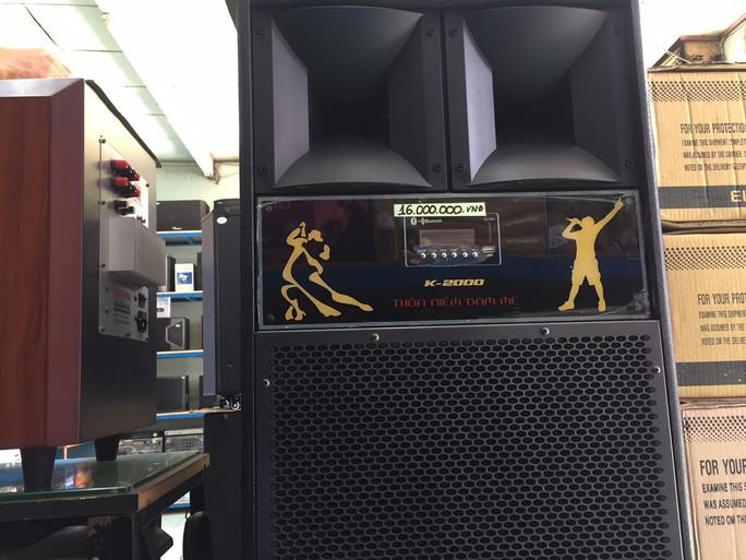 Loa kéo hát karaoke đắt hàng dịp Tết - Ảnh 1.