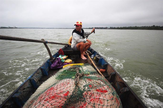 Từng đàn cá đối từ biển ngược vào cửa sông An Hòa - Ảnh 1.