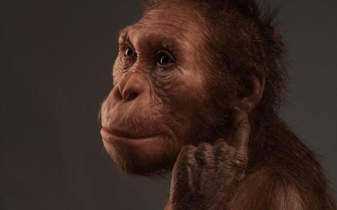 Vấp khúc xương, cậu bé phát hiện tổ tiên mất tích của loài người - Ảnh 2.
