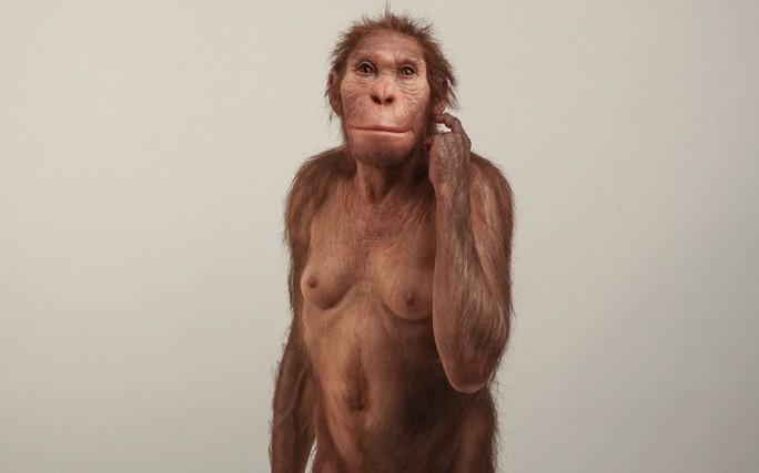 Vấp khúc xương, cậu bé phát hiện tổ tiên mất tích của loài người - Ảnh 1.