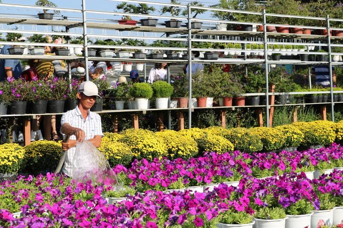 Chưa Tết, làng hoa lớn nhất miền Tây đã nườm nượp khách - Ảnh 13.
