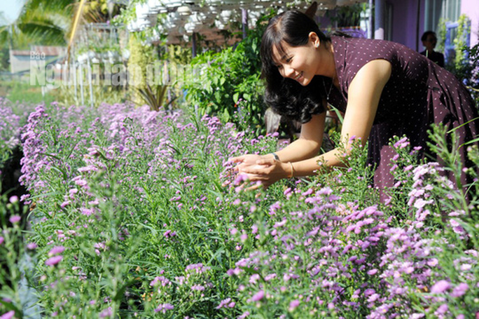 Lão nông 70 tuổi tiết lộ lí do trồng toàn hoa kiểng màu tím, thu hơn 15 tỉ/năm - Ảnh 3.