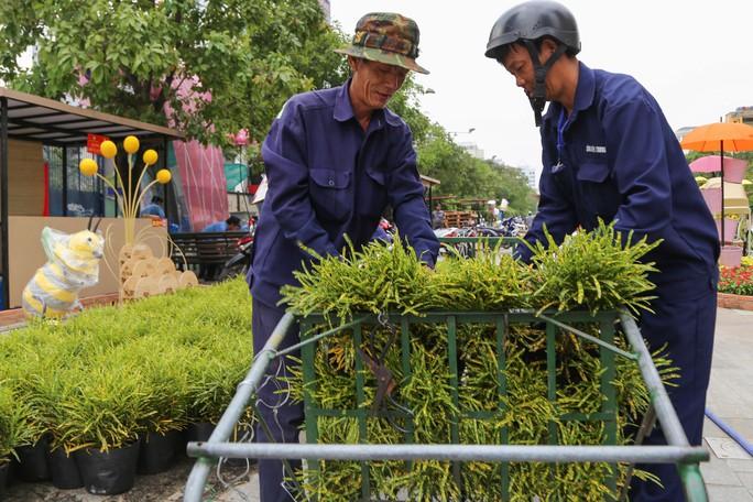 Toàn cảnh đường hoa Nguyễn Huệ trước giờ khai mạc - Ảnh 8.