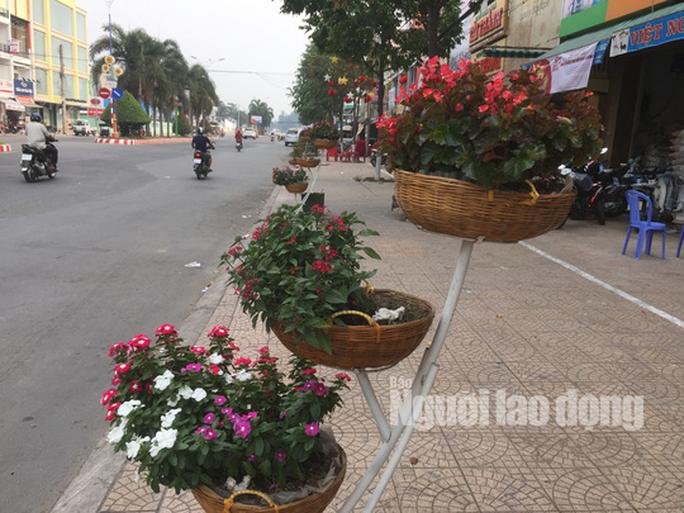 Độc đáo những tuyến đường đầy hoa ở đất Sen hồng Đồng Tháp - Ảnh 1.