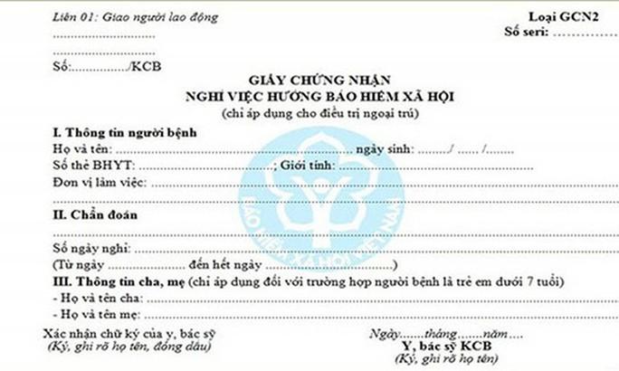 Hướng dẫn đăng ký cấp giấy chứng nhận nghỉ việc hưởng BHXH - Ảnh 1.