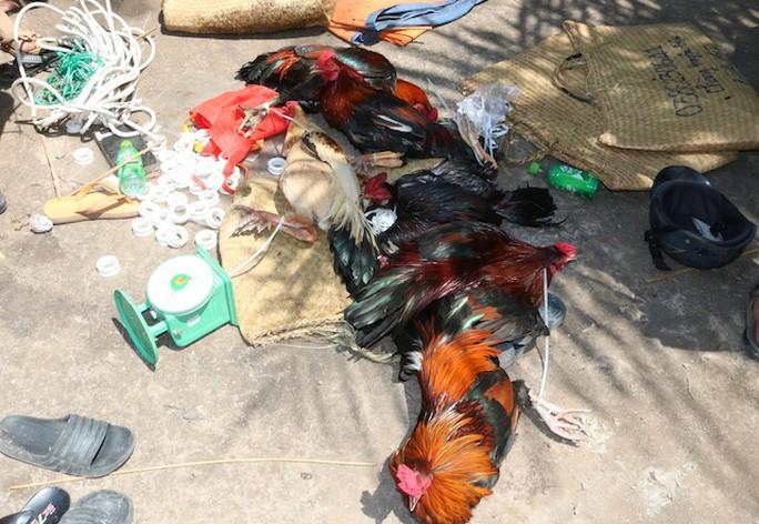 Công an ập vào trường gà, 92 người say sưa sát phạt bị tóm gọn - Ảnh 2.