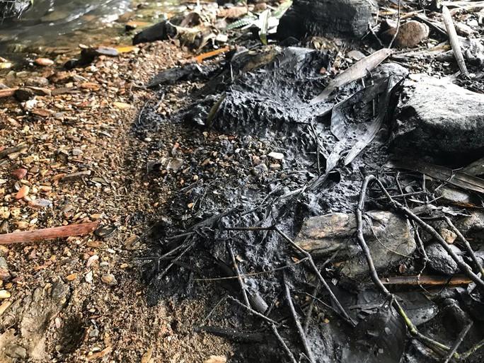 Cận cảnh dòng suối đầu nguồn nhà máy nước sông Đà dính đen dầu thải - Ảnh 4.