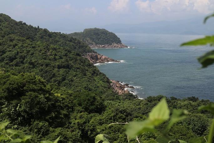 Cận cảnh hàng loạt dự án đang băm nát Bán đảo Sơn Trà - Ảnh 1.