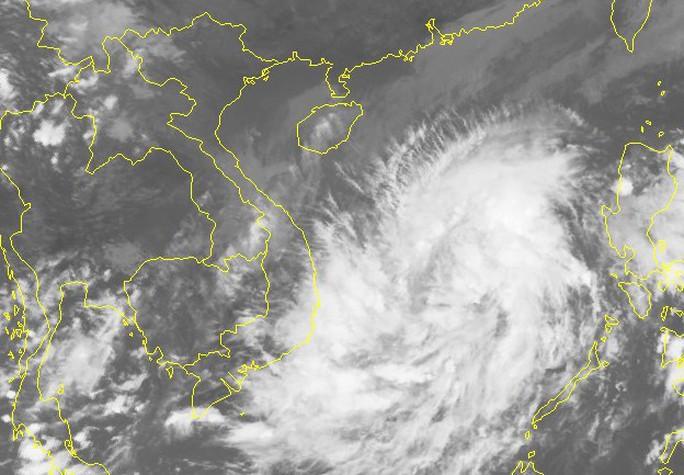 Áp thấp nhiệt đới mạnh lên thành bão số 5, đổ bộ Bình Định - Ninh Thuận - Ảnh 2.