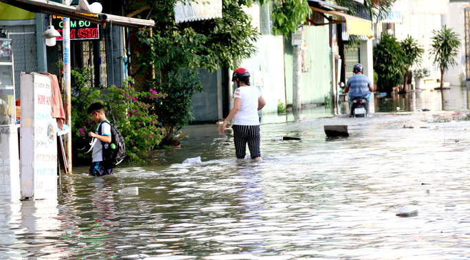Nhiều rốn ngập ở TP HCM không bị ngập như dự báo triều cường - Ảnh 1.