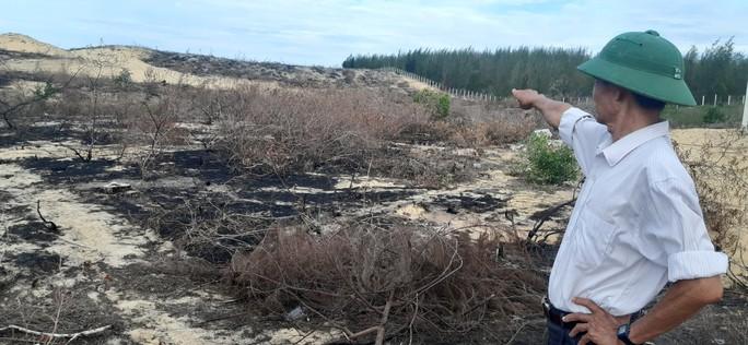 Tạm dừng dự án để mất 140 ha rừng nhằm phục vụ công tác điều tra - Ảnh 3.