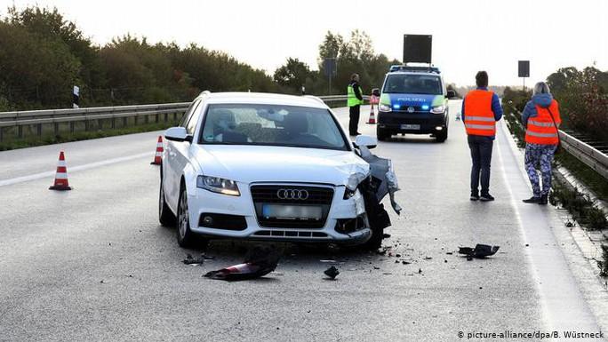 Ngựa vằn đại náo đường cao tốc, xe hơi đâm nhau hư hỏng - Ảnh 2.