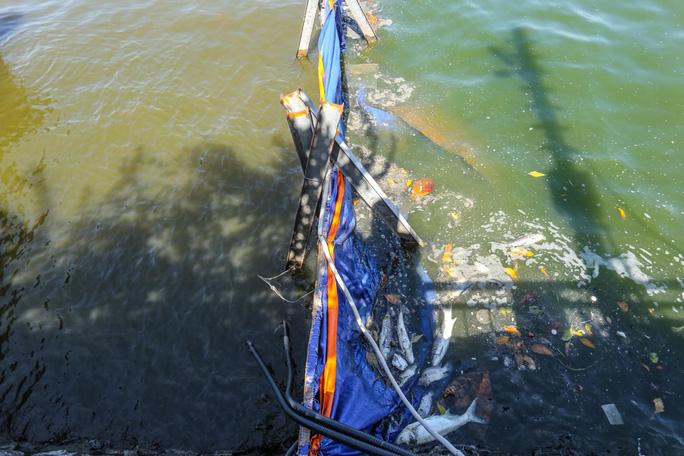 Bộ trưởng Trần Hồng Hà thị sát khu vực thí điểm xử lý nước, cho cá Koi ăn ở hồ Tây - Ảnh 6.