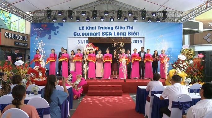 Bán lẻ Việt nỗ lực mở rộng mạng lưới - Ảnh 1.