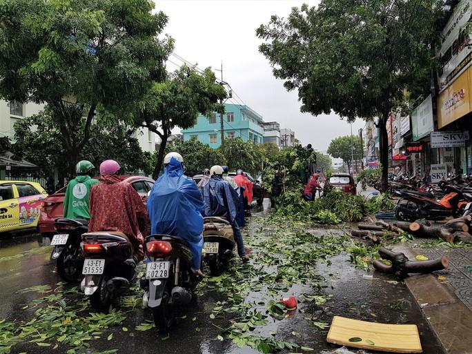 Đà Nẵng: Ảnh hưởng nhẹ của bão, hàng loạt cây xanh đã bật gốc - Ảnh 5.
