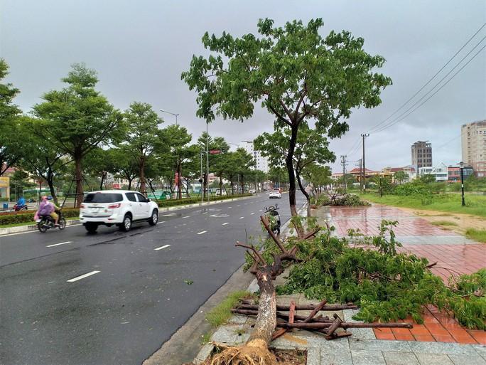 Đà Nẵng: Ảnh hưởng nhẹ của bão, hàng loạt cây xanh đã bật gốc - Ảnh 6.