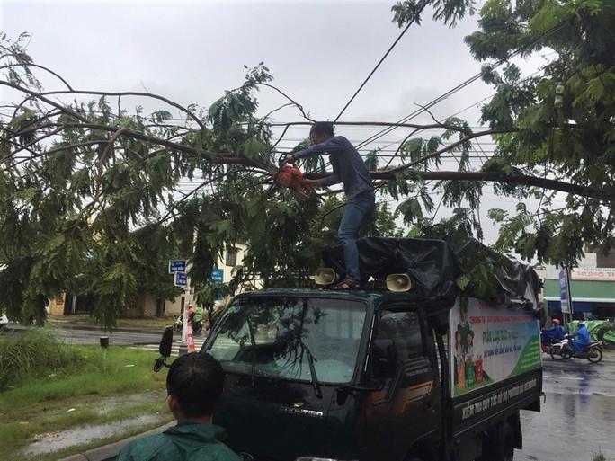 Đà Nẵng: Ảnh hưởng nhẹ của bão, hàng loạt cây xanh đã bật gốc - Ảnh 7.