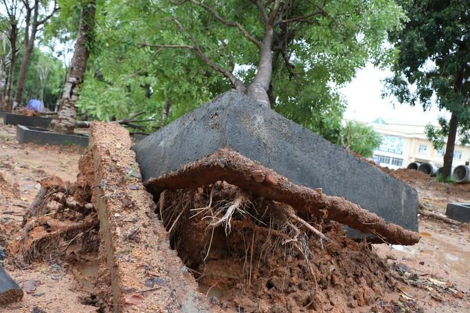 Quảng Nam: Mưa lớn, nước sông đang lên, 1 huyện miền núi bị lũ chia cắt - Ảnh 5.