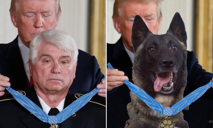 Tổng thống Trump đăng ảnh chế về chú chó dồn trùm IS vào đường cùng - Ảnh 1.