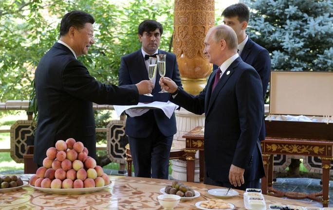 Ông Putin đổi gu mừng sinh nhật - Ảnh 6.