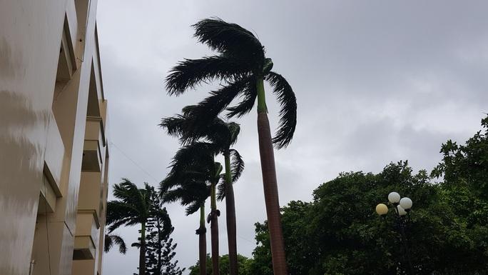 Bão số 6 áp sát bờ, gió giật mạnh, mưa như trút nước - Ảnh 2.