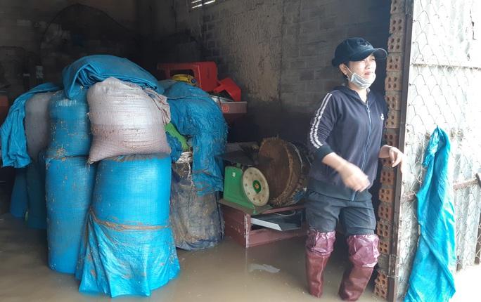 Đắk Lắk: Hàng trăm nhà dân chìm trong nước lũ - Ảnh 12.